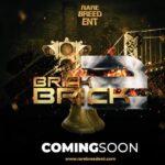 BRICK BY BRICK VOL 2